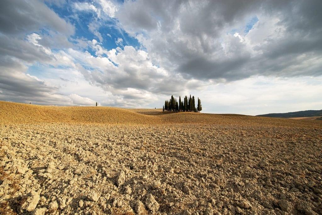 Zypresseninsel wenige Kilometer nördlich von San Quirico d'Orcia.